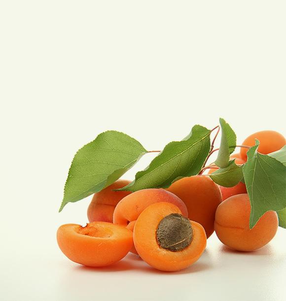 Home 19 - Fruit